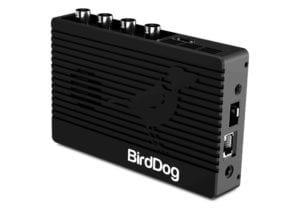 dveas_birddog-4k family