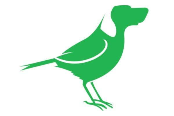 dveas_birddog-logo