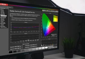 PORTRAIT DISPLAY - Calman Color Calibration Software-DL11-2